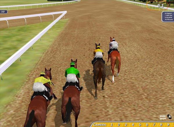 Игры про лошадей на двоих