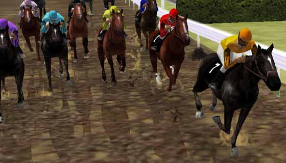 Betting on horses games online free bitwala bitcoins